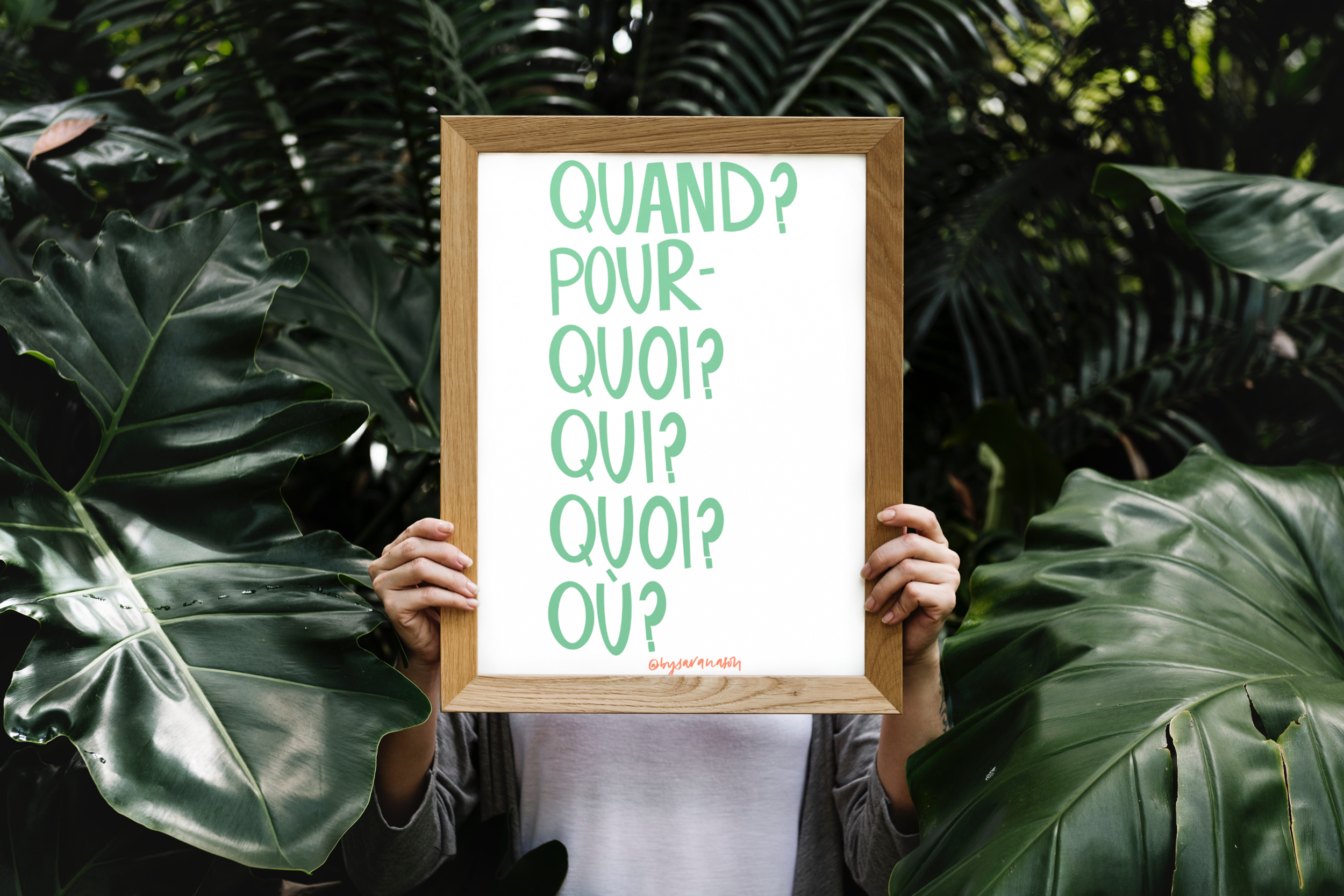 TX003 French Questions Green