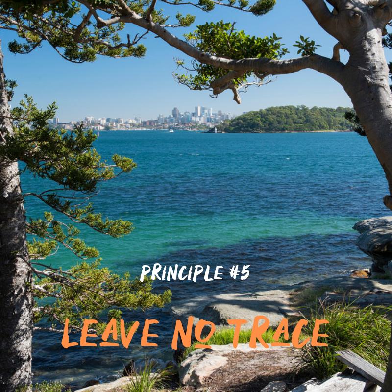 principle #5 (2).png