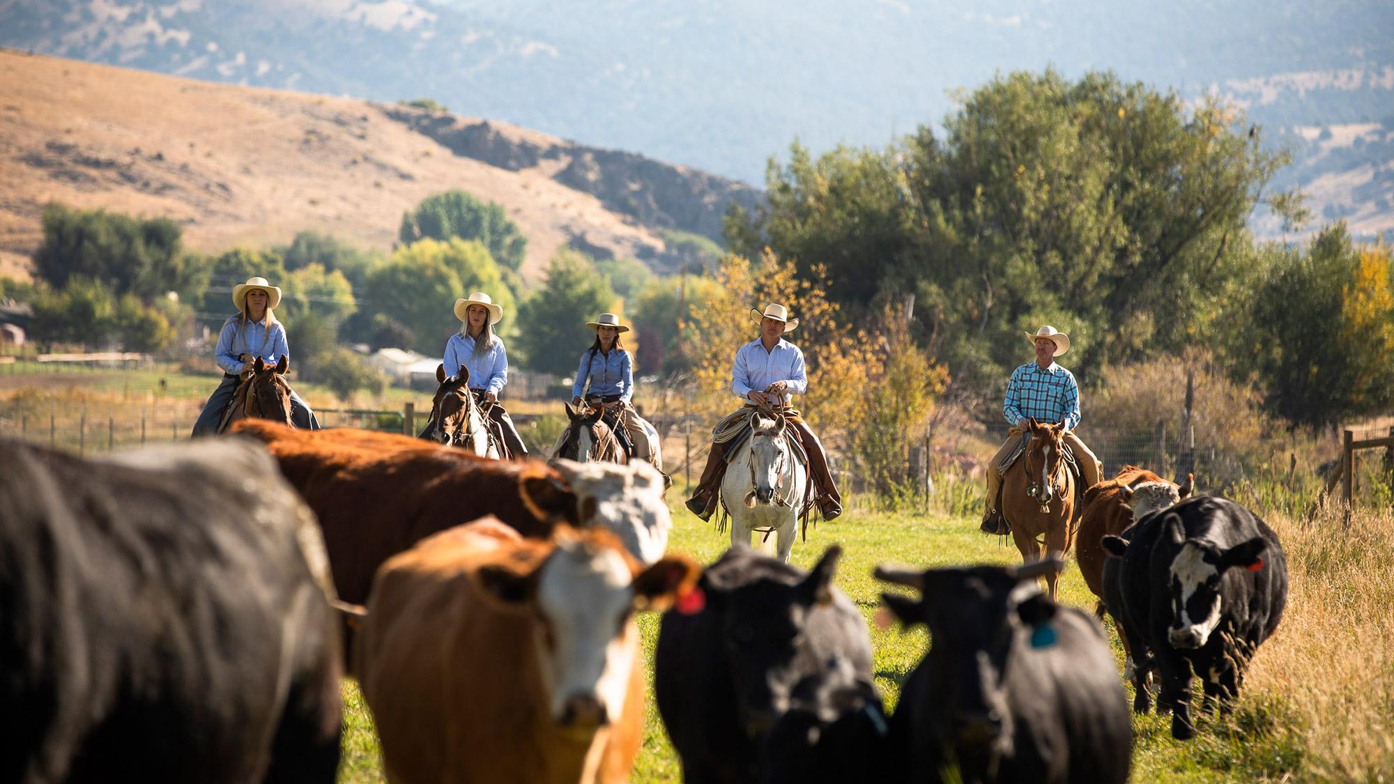 bsk-gallery-horsebackridingranch.jpg