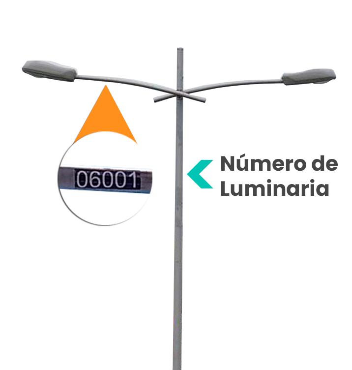 No.-Luminaria-2.png