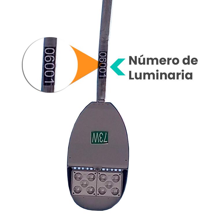 No.-Luminaria-1.png