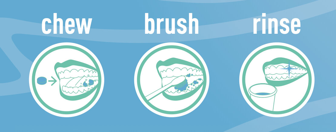 Chew Brush Rinse