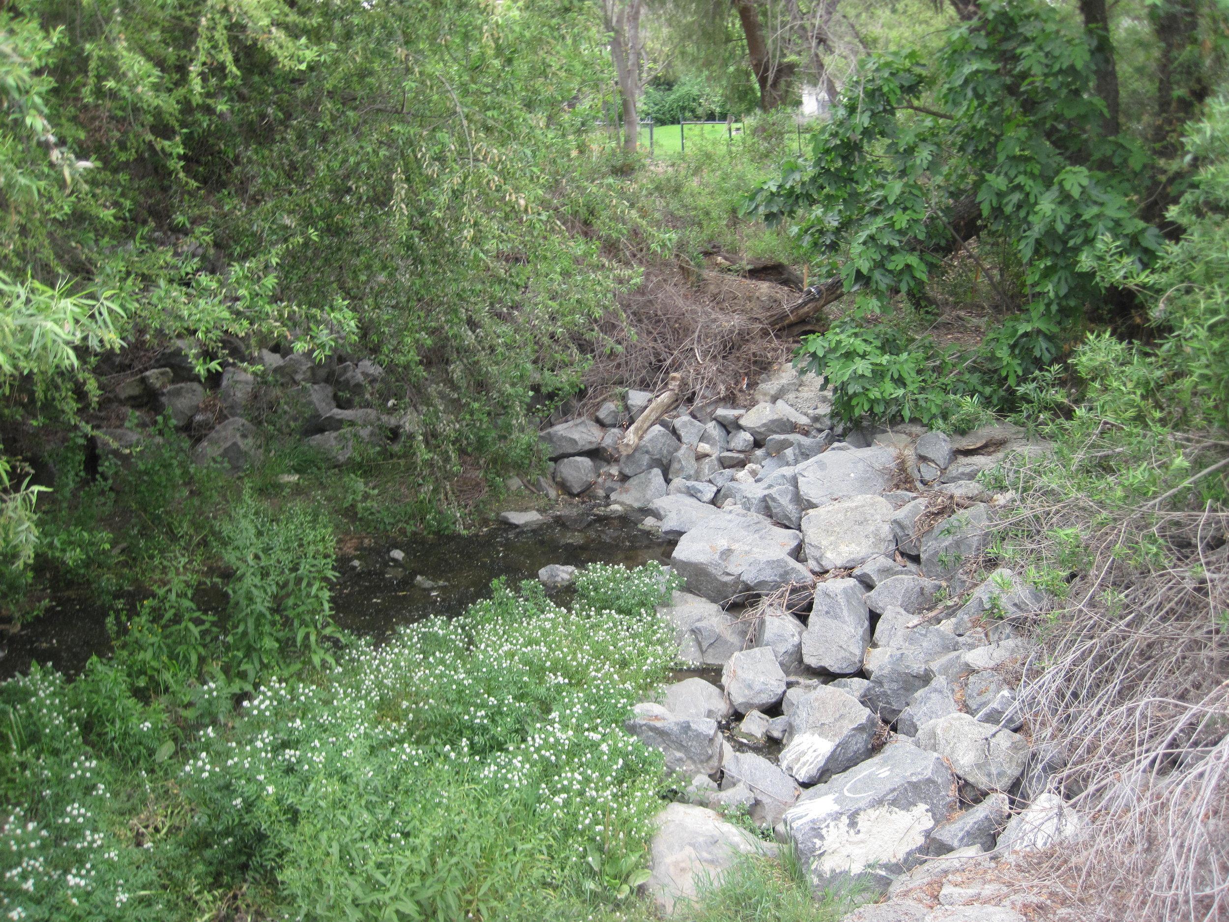 Chino Hills Basin.jpg