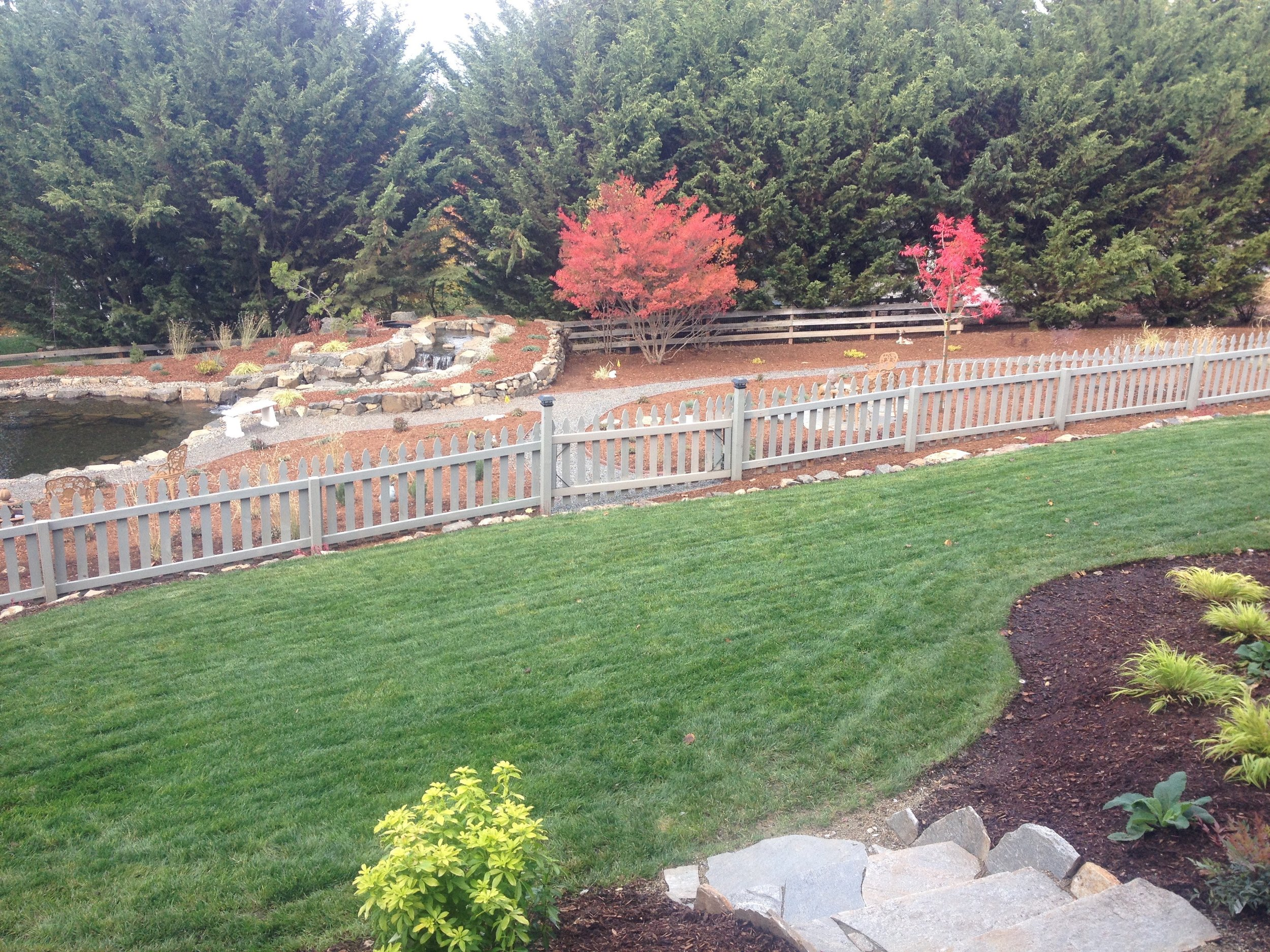 Lawn Care - We analyze your lawn and design a tailored approach to help your lawn flourish. We also install low water grasses and Dream Turf, a synthetic turf grass.
