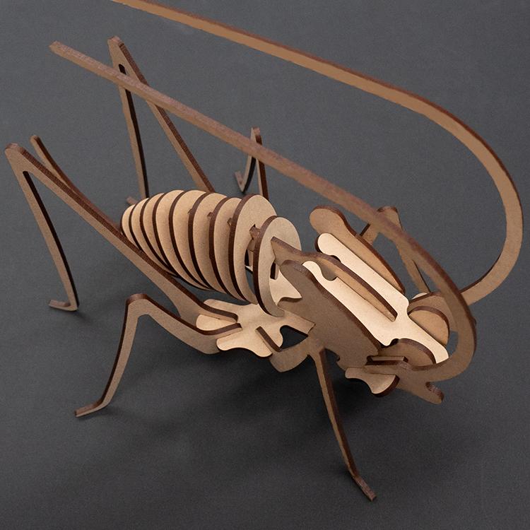 Laser-cut-grasshopper-model