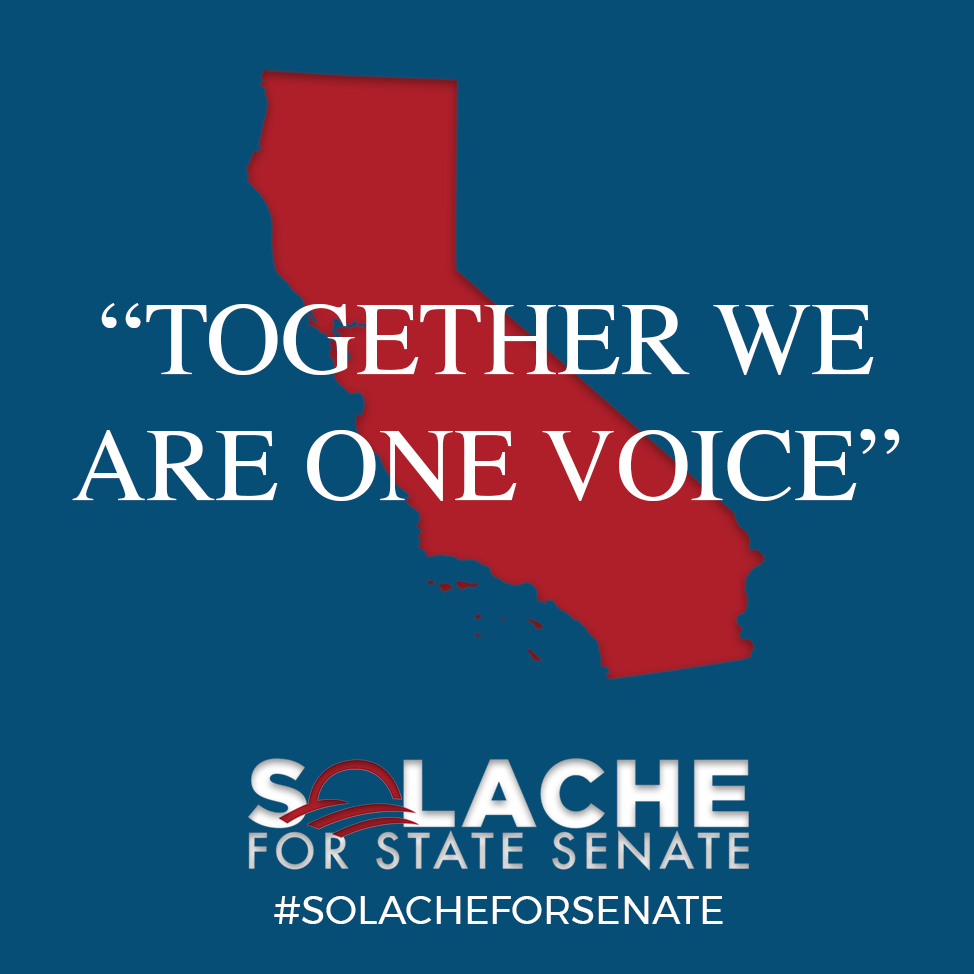 SolacheForSenate-Together.png