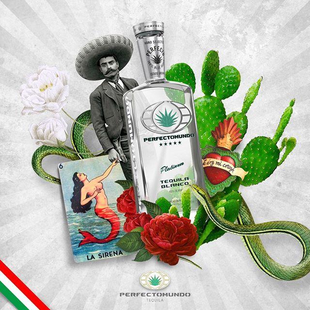Thanks Mexico for Perfectomundo Tequila!⠀ ⠀ …⠀ ⠀ ¡Gracias México por el Tequila #Perfectomundo!�⠀ �#perfectomundotequila #besttequila  #lavidaperfecta #tequila #tequilatequila #brandsofmexico #mexico #mexico🇲🇽 #FridayMotivation #FelizViernesATodos #collage