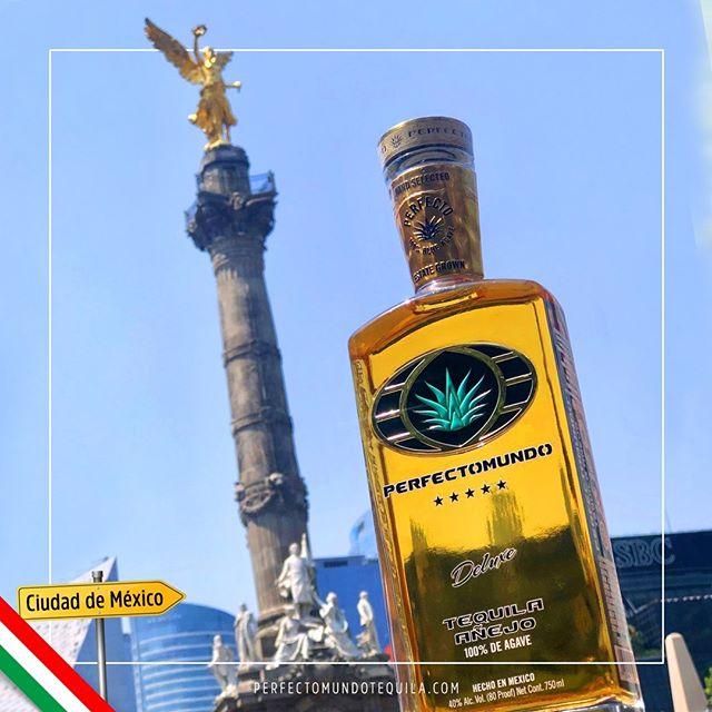 """You don't know what a """"fiesta"""" is until you partied in Mexico City!⠀ ⠀ ¿Tu que vas a saber de fiesta si nunca te has ido de parranda en México?⠀ ⠀ #perfectomundotequila #besttequila  #lavidaperfecta #tequila #tequilatequila #brandsofmexico #mexico #mexico🇲🇽 #party #partynight #partytime #fridayparty #fiesta #fiestas #viernes #cdmx #ciudaddemexico"""