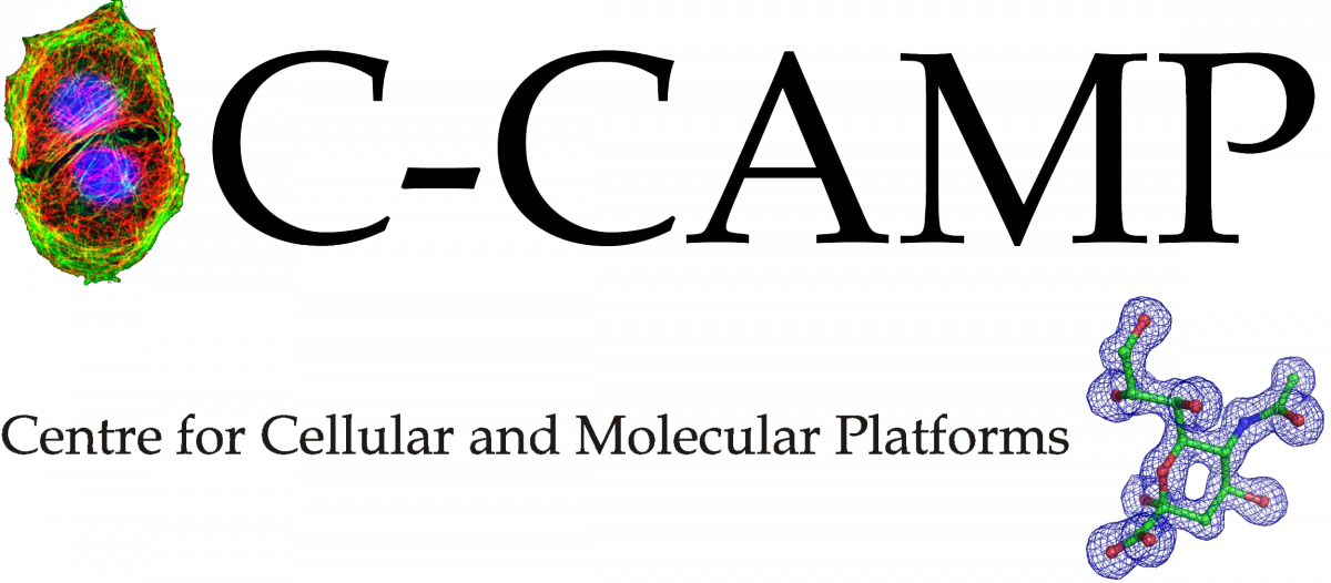 C-Camp_logo_wo_back.png