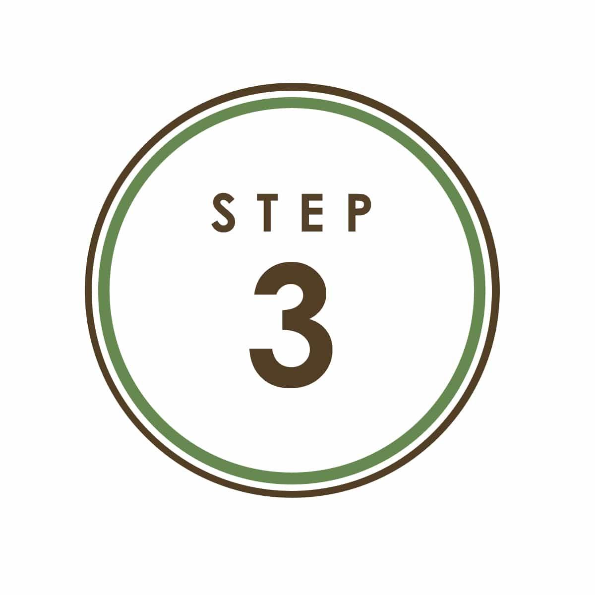 Step 3 Icon.jpg