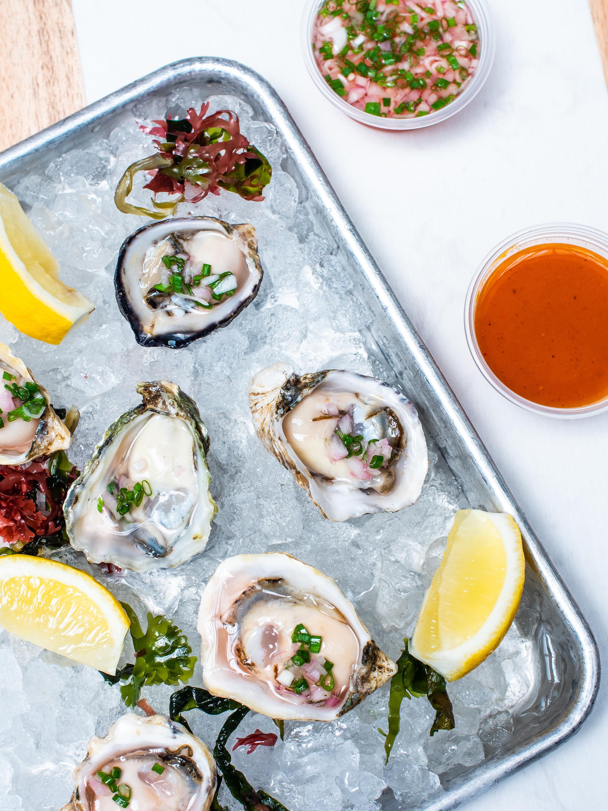 STRFSH Oysters_Hero.jpg