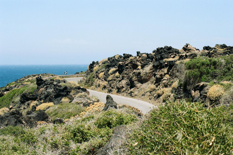 Garrigue Pantelleria.jpg