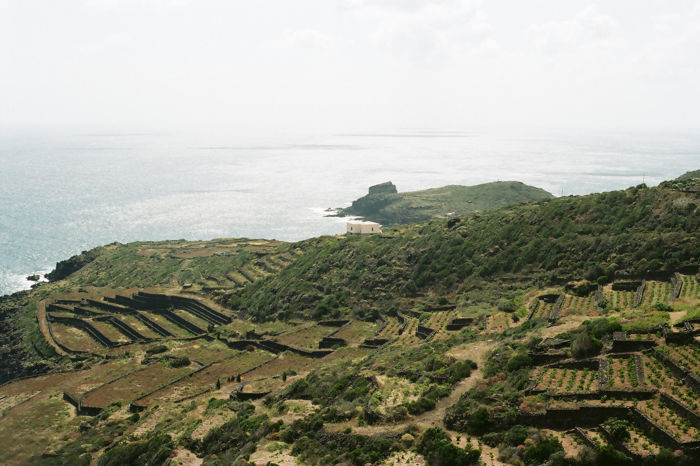 Terraces Pantelleria.jpg
