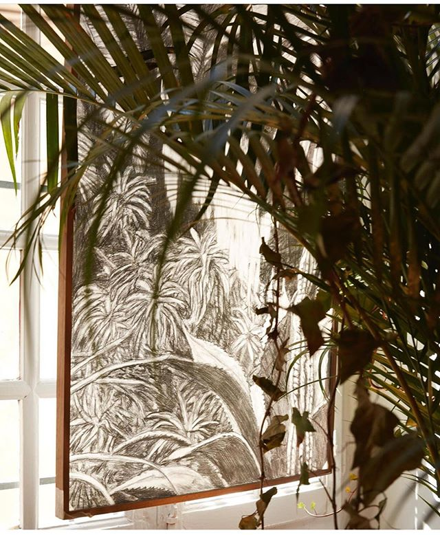 Natural. . . . . . #plant #green  #naturelover #interiordesign  #palmtree