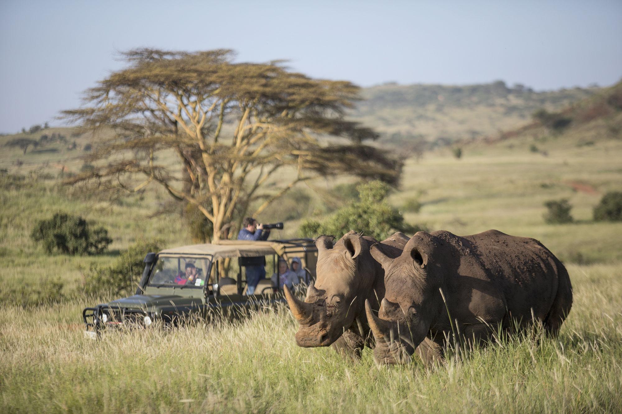 Sirikoi Lodge safari