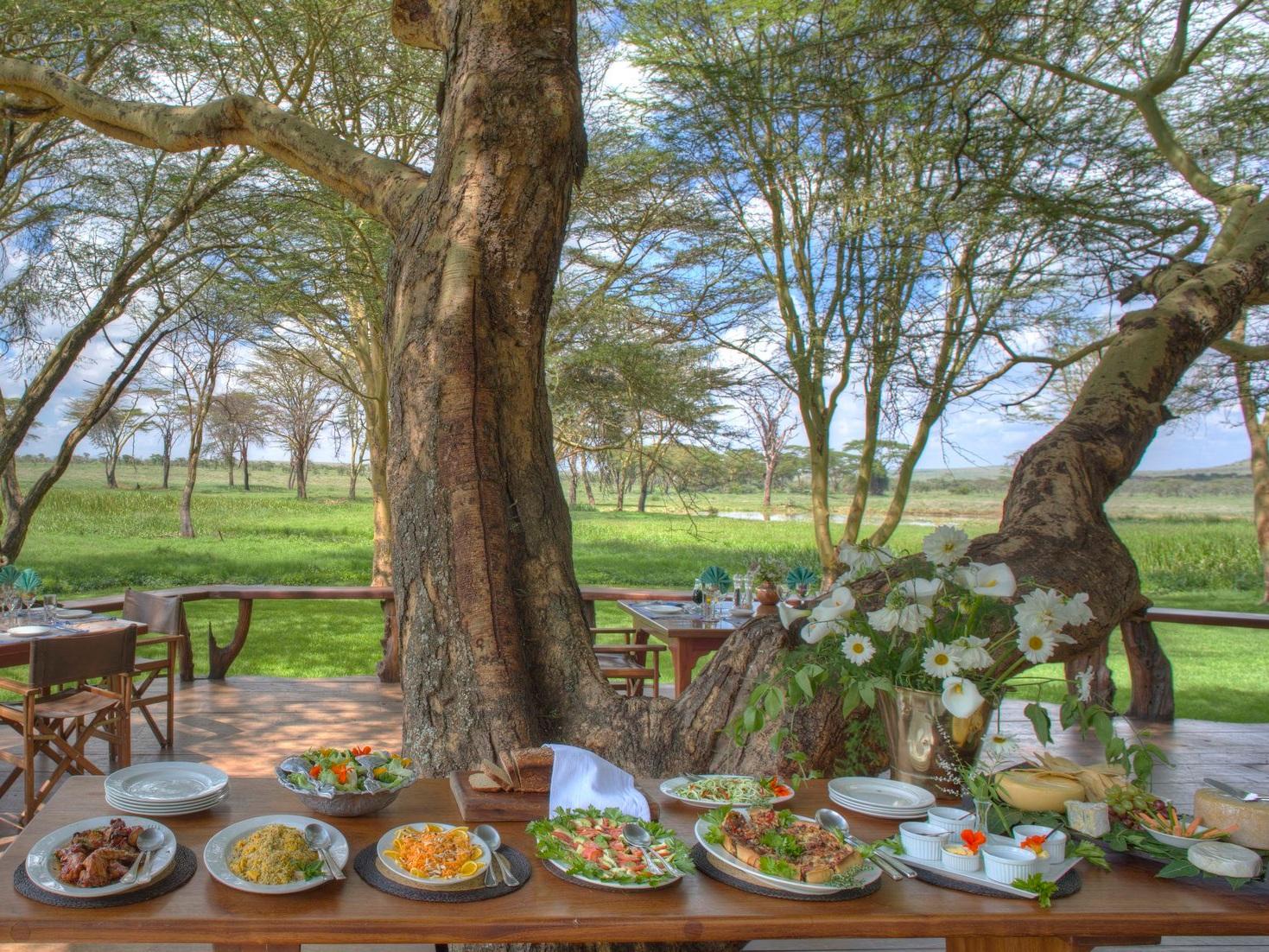 Eco-lodge safari Kenya