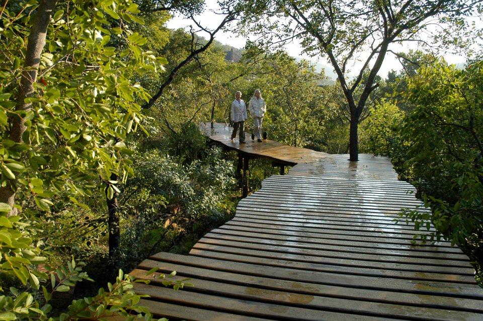 Africa yoga wilderness holiday