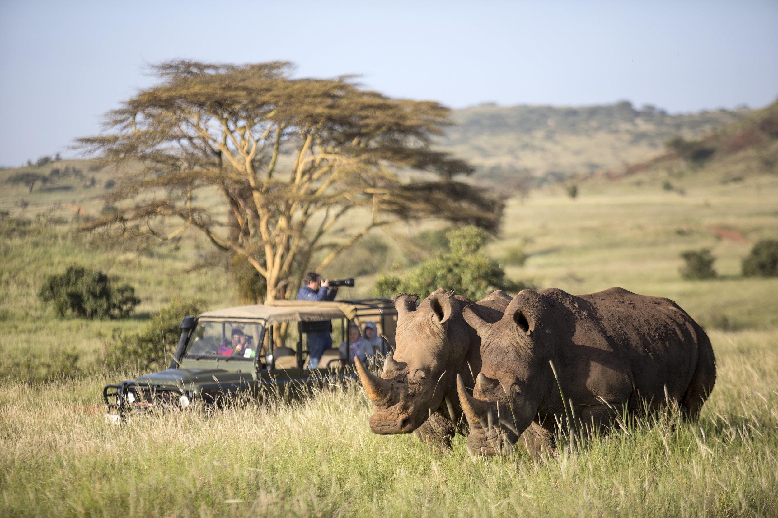 Exotic-yoga-retreats-kenya-yoga-safari.jpg