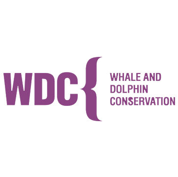 WDC-loog-purple.png