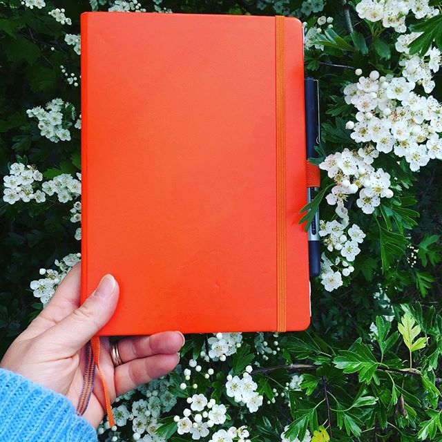 What do you use your journal for? Not everyone is a bullet journaler. ☀️Our Suggestions ☀️ 🧠Mood Tracking 📚 Reviewing books you read 🏋🏻♀️ Fitness ✍🏻 A Diary 👶🏼 Your child's special moments.  #doodlycrew #joyinjournaling