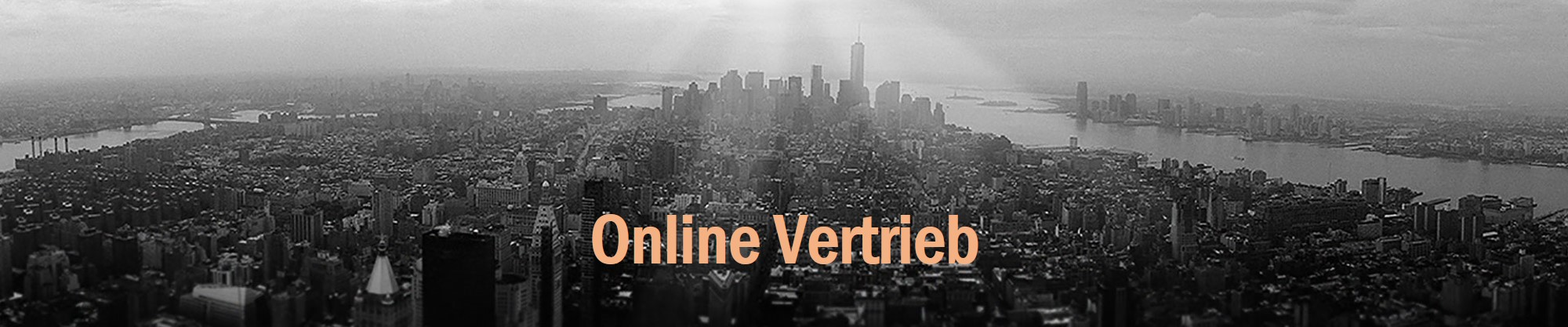 OnlineVertrieb_SonjaDirr_apricot.jpg