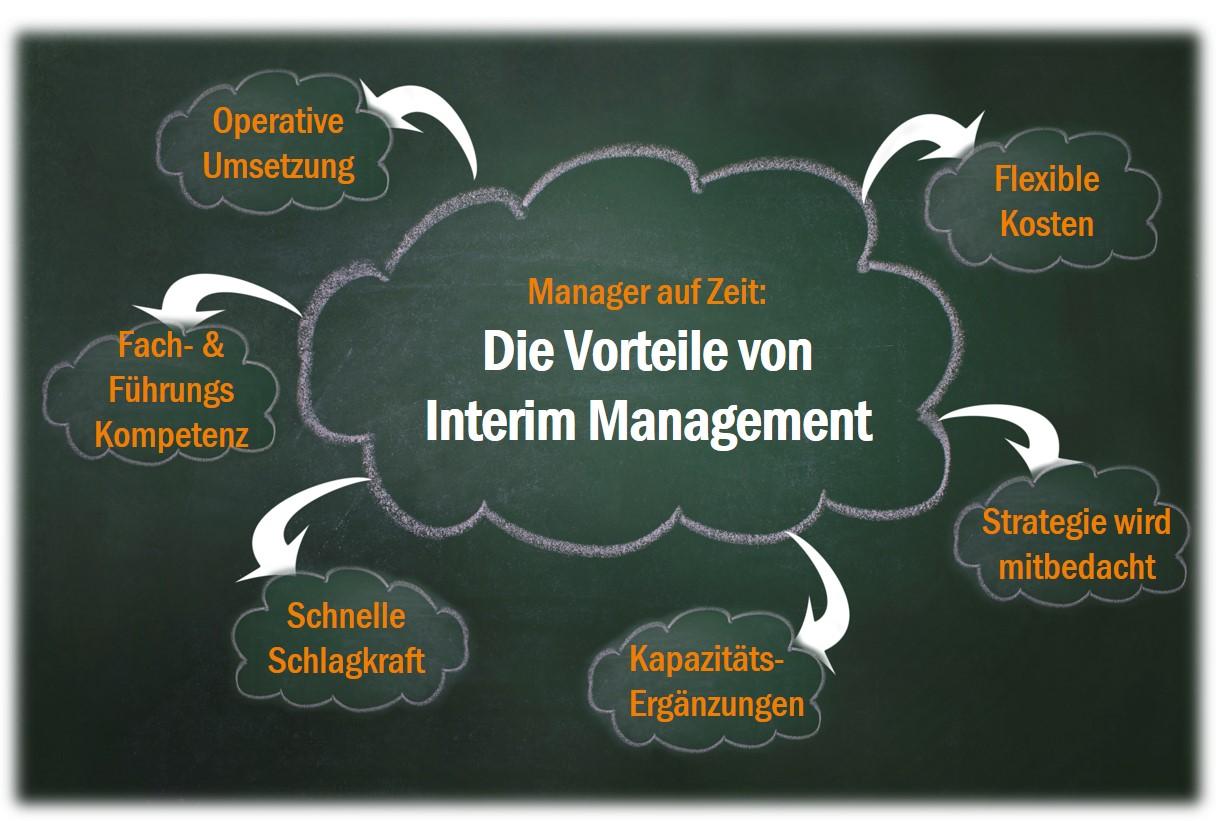Vorteile Interim Management_SonjaDirr_apricot.jpg