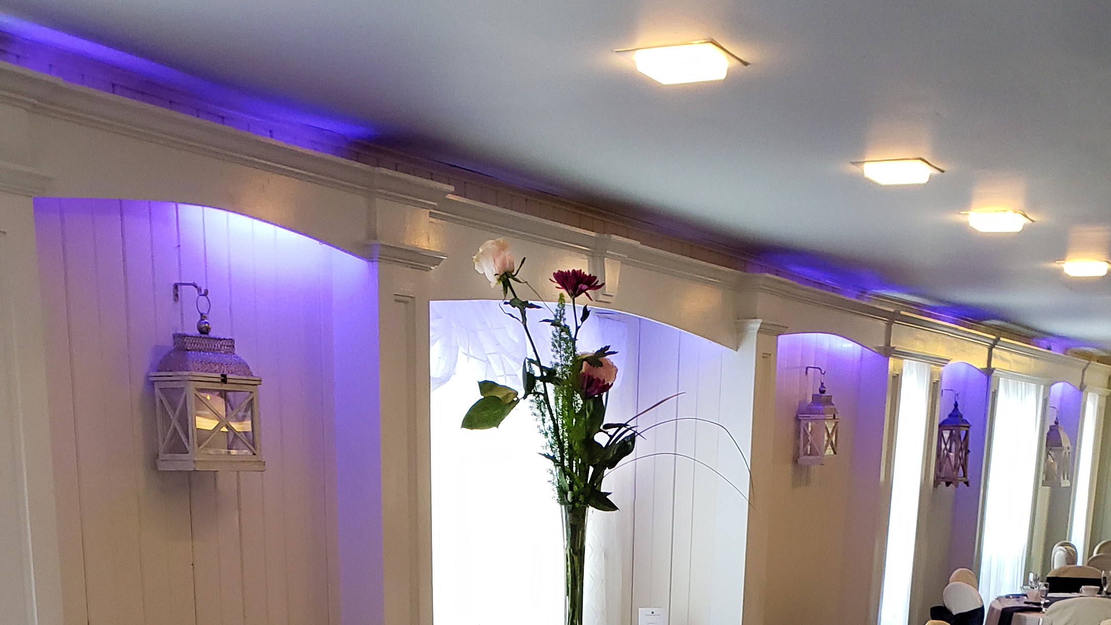 Dining Room Wall Lighting (Color Customization)