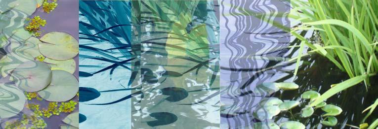 Pond Tableau IV