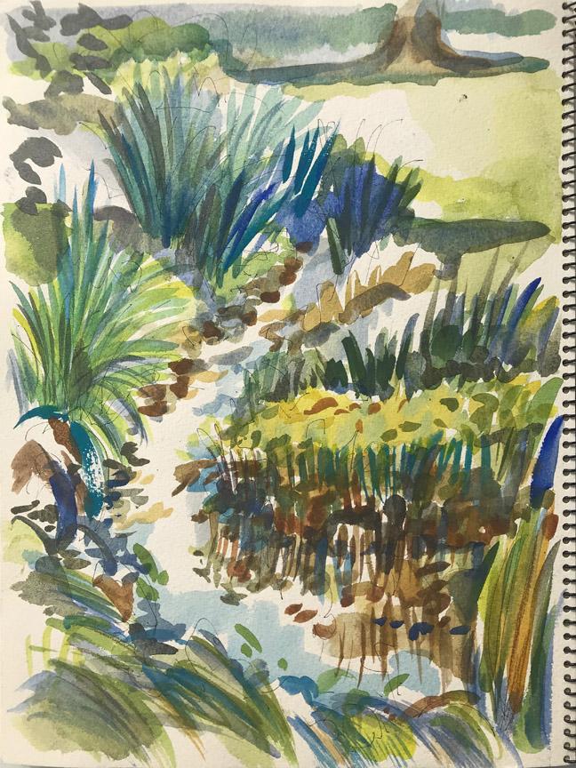 Pond Sketch II