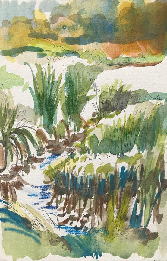 Pond Sketch III