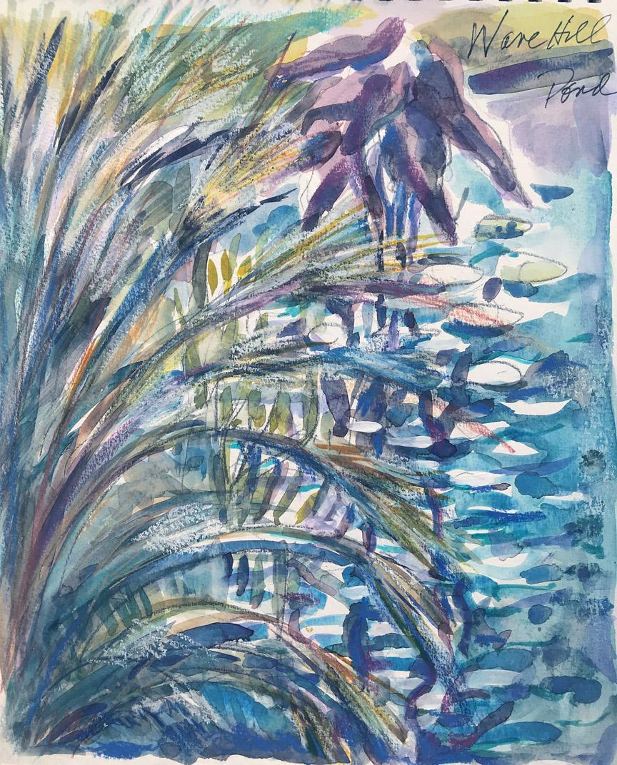 Pond V