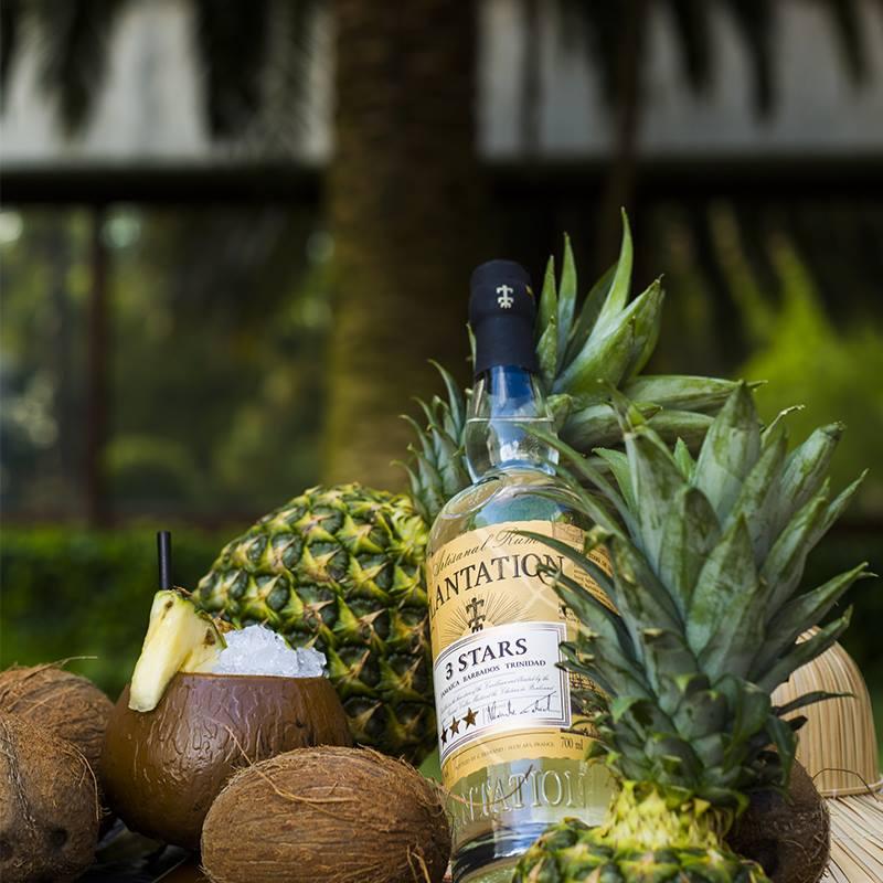 WINE & SPIRITS - Maison FerrandCitadelle GinPlantation RumVinovision