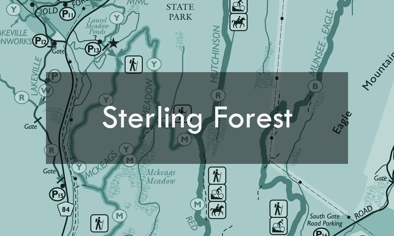 Sterling Forest_blue.png