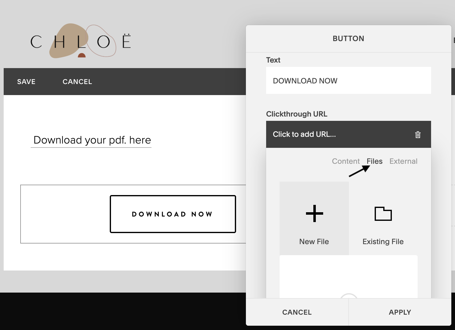 Embed PDF in Squarespace 4.png