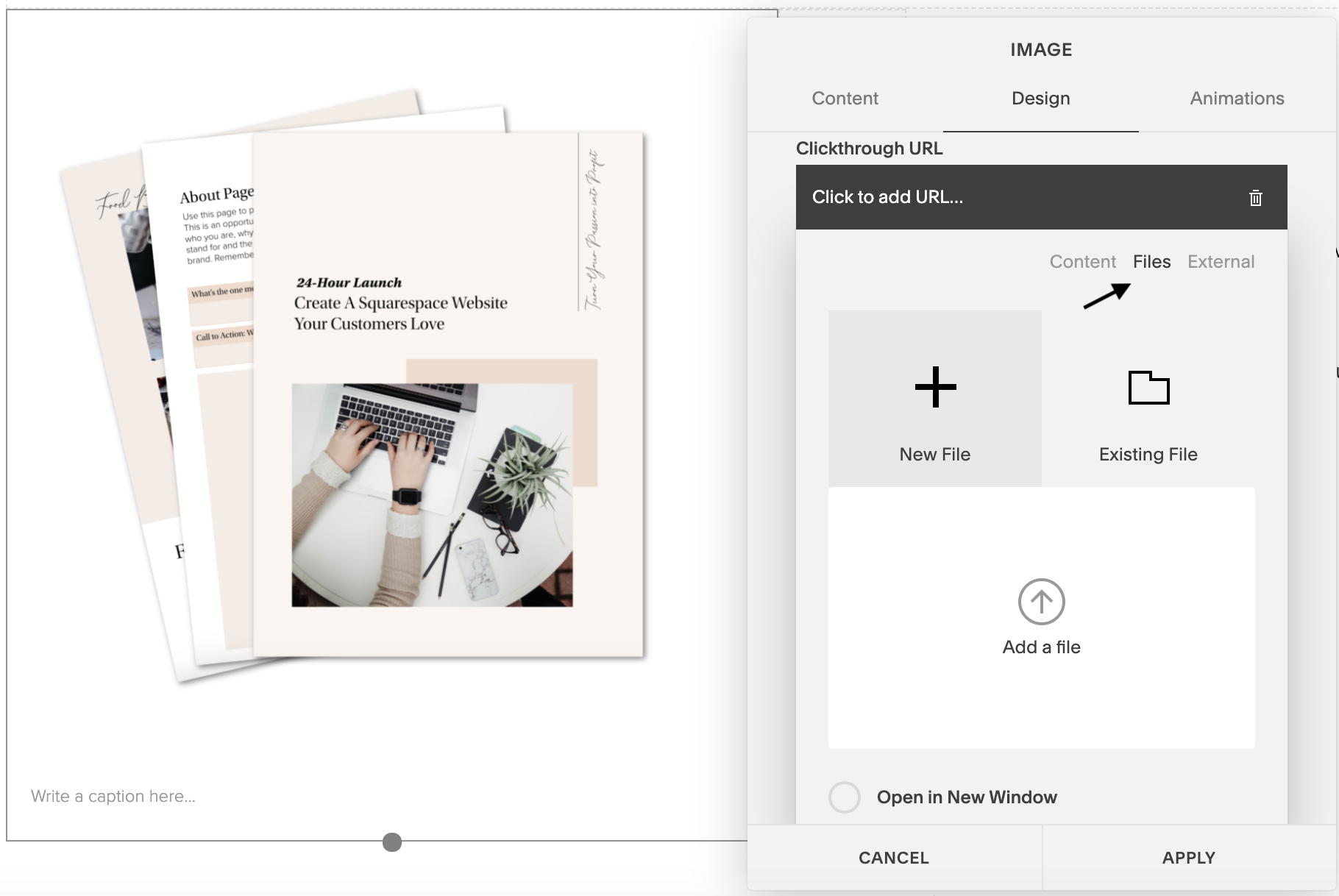 Embed PDF in Squarespace 6.png