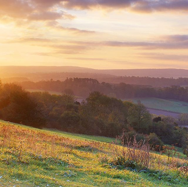 Do you want to escape the city life and find somewhere more tranquil to live? Why not let us find the perfect property for you in Surrey and its borders. #surreyhills #surrey #beautifulscenery #thequietlife #countryliving #propertyfinders