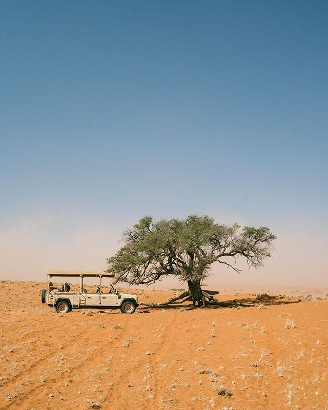 Namibian adventures 🦓 . Pays de fou ! Pleins de choses à voir et des paysages à couper le souffle.  Je prends mon pied avec le 70-200 f2.8  @sony! Hâte de te partager plus d'images 😊 . #namibia