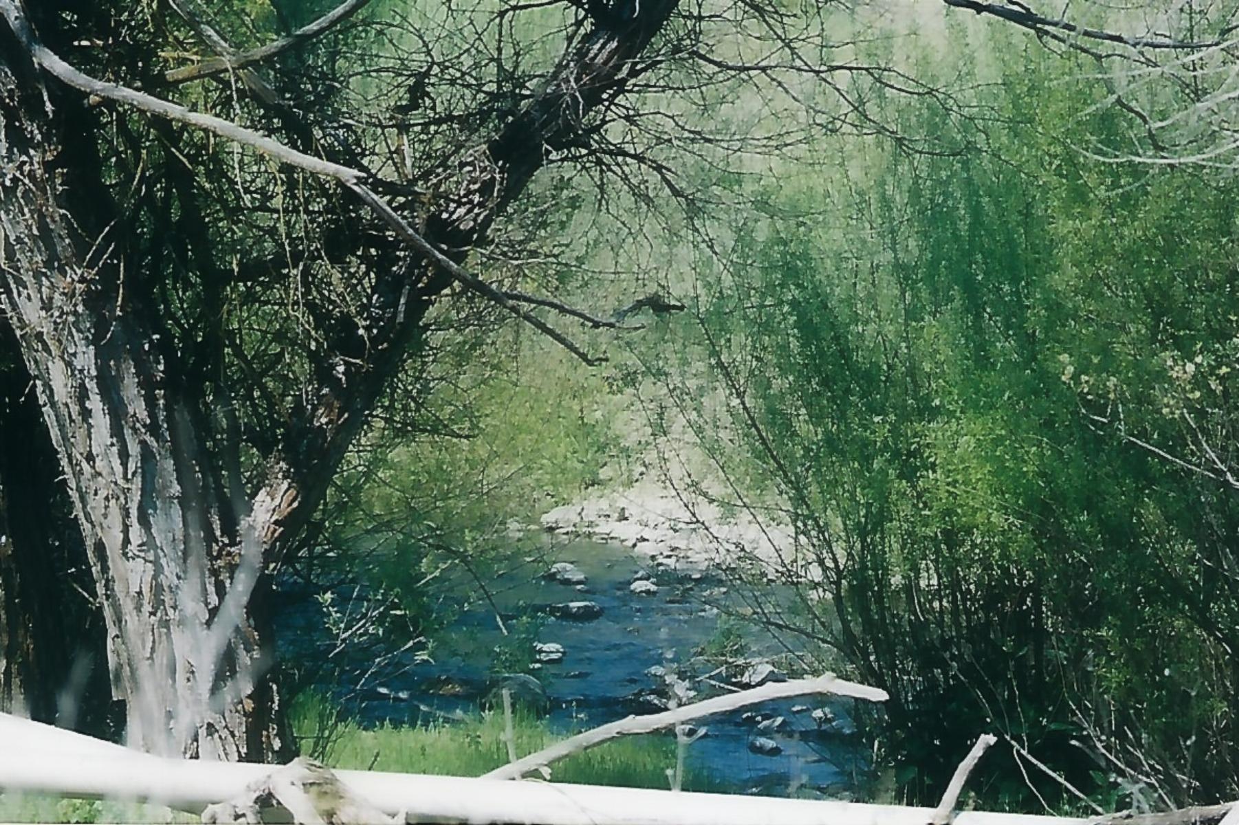 Crawford creekview.jpg