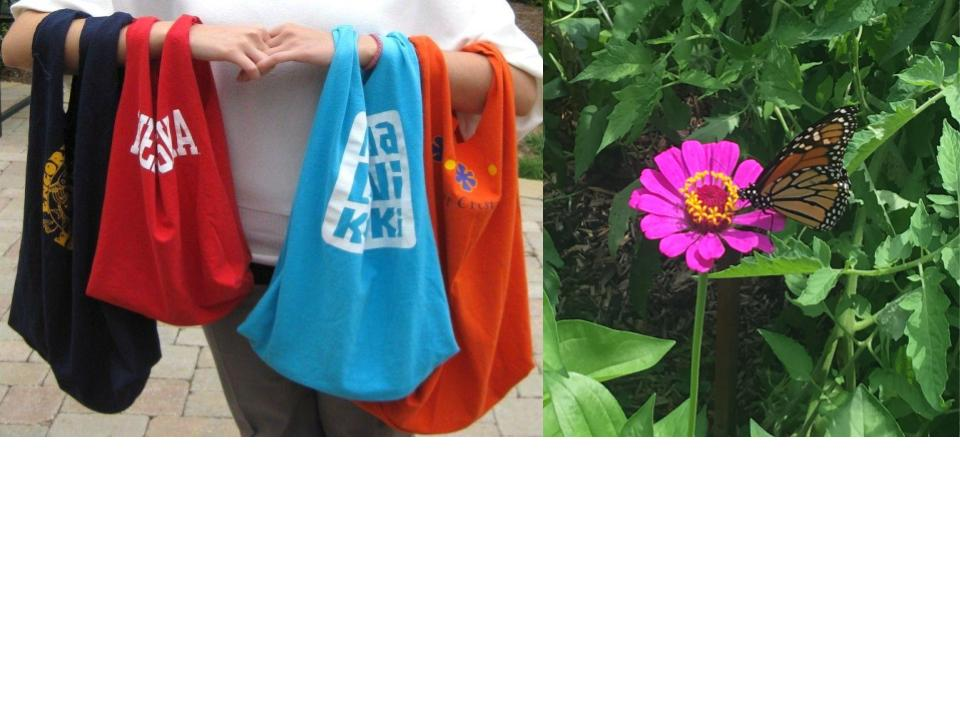 monarch_bags.jpg