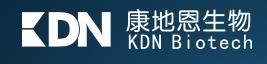 2. KDN Biotech.png