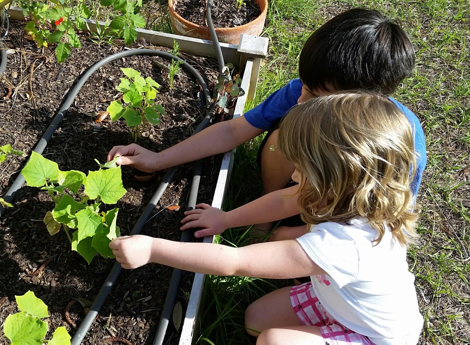 kids-gardening.jpg