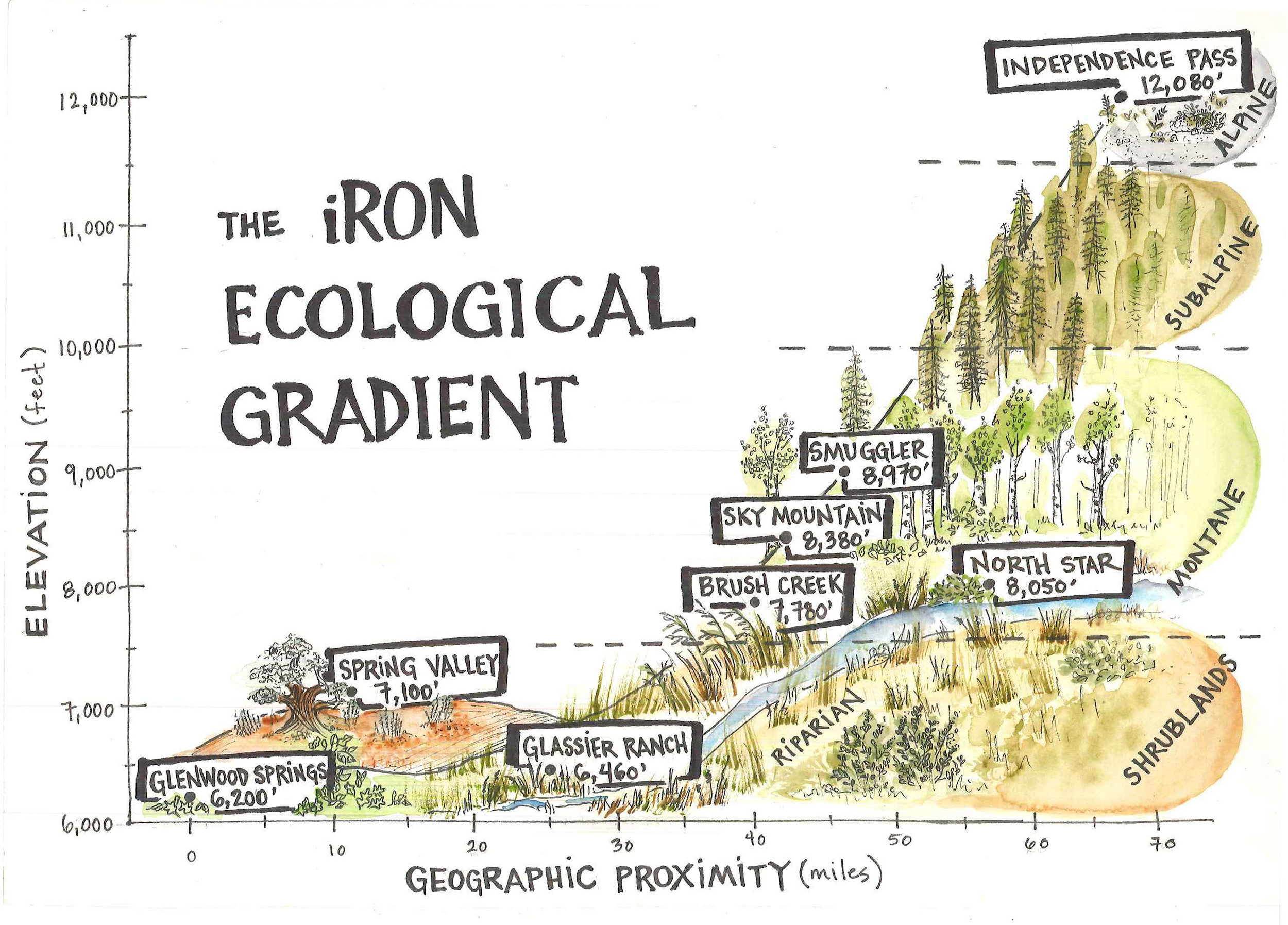 iRON Ecological Grandient (final) (1).jpg