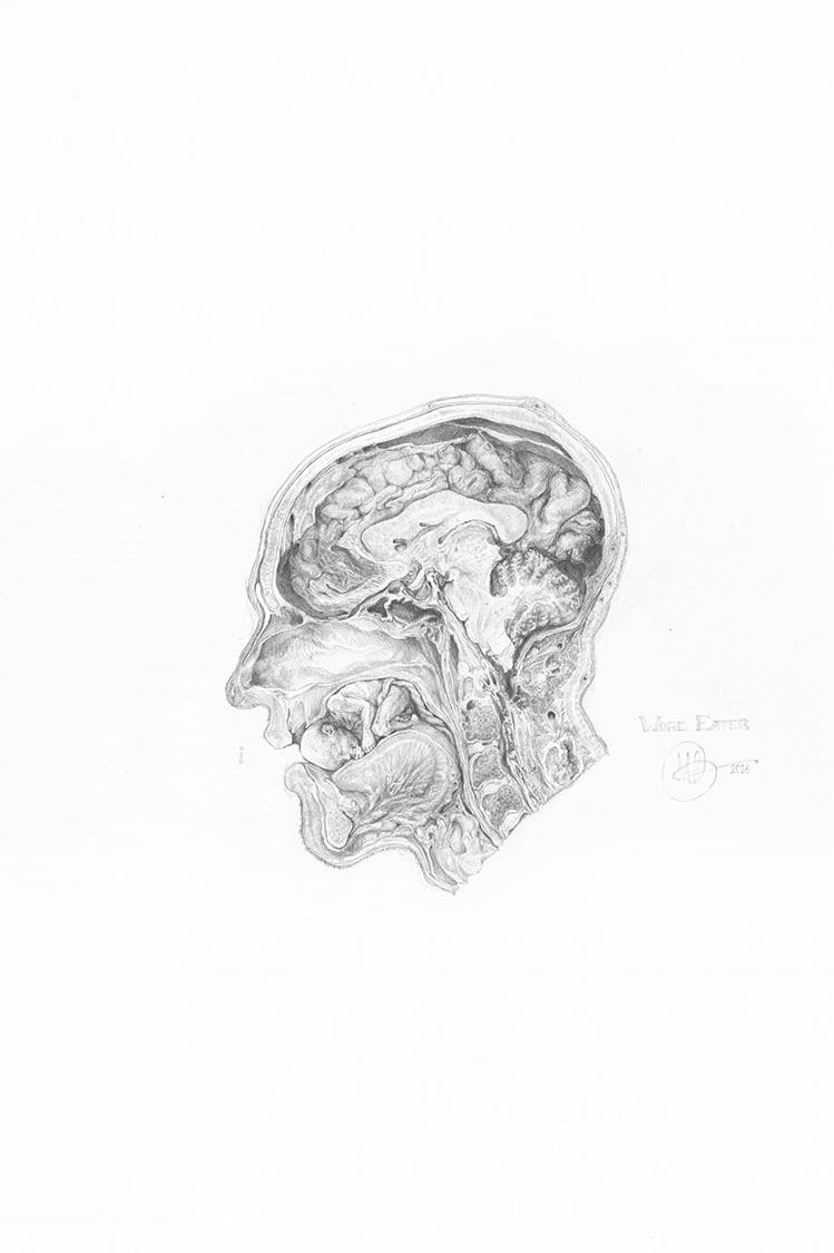 """World Eater , 2017 Graphite sur papier, 18"""" x 24""""."""
