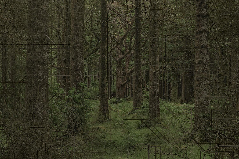 """Antérieur , 2018 Édition de 3 Impression photochrome sous plexi 42 x 62""""."""