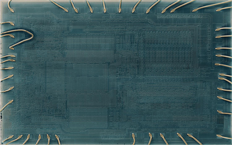 """Nervures , 2019, Ed. 1/3, Impression sur papier mat, cadre en aluminium peint noir, 51"""" x 82"""""""
