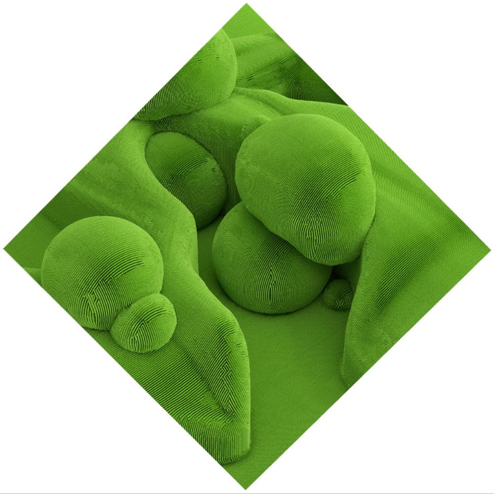 """Topiary I , 2019. Épreuve à développement chromogène, 40"""" x   40""""."""