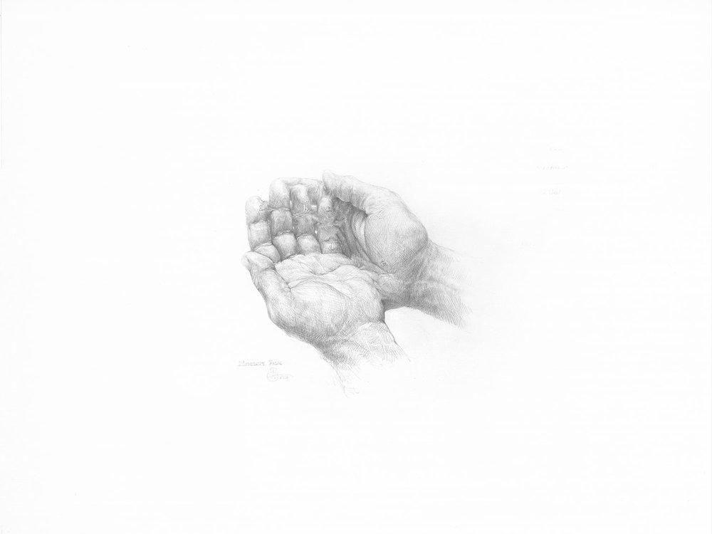 """Mendicant Palm , 2016. Graphite sur papier, 18"""" x 24""""."""