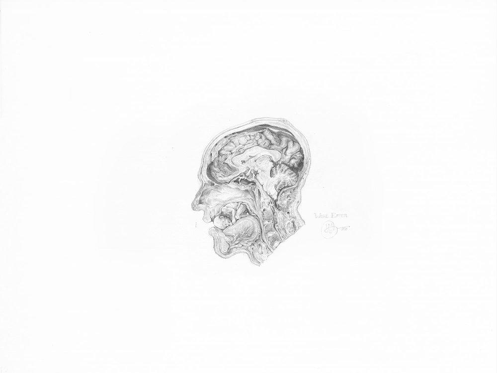 """World Eater,  2017. Graphite sur papier, 18"""" x 24""""."""