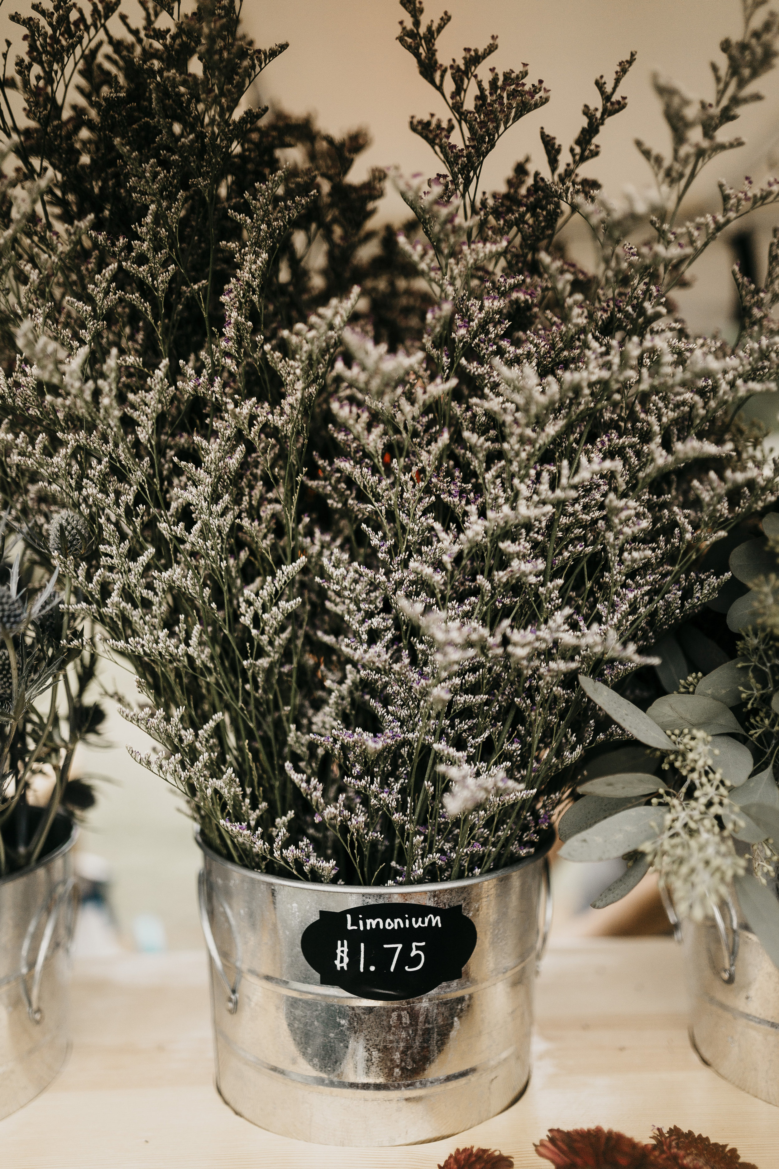 Limonium   The flower truck's favorite filler! Limonium is almost always on the truck and looks great with purples, blues, and whites. It adds a lot of volume to a bouquet and sure to a delicate addition to the bouquet.