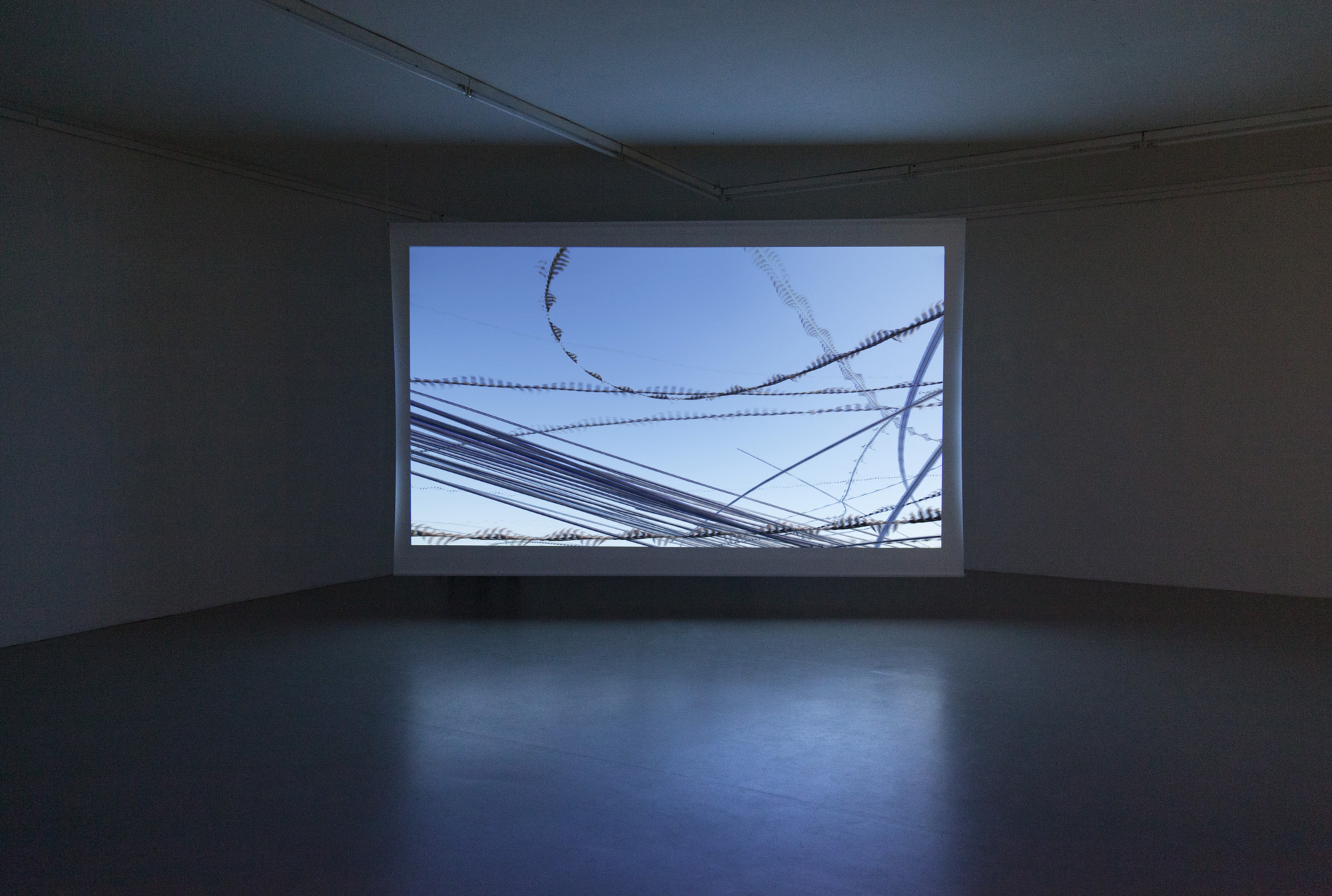 Planes, Single-channel video, 45 min., 2016  (installation view)  Planes compresses the flight trajectories of all incoming and outgoing planes of an airport in one day. In post-production the individual frames are overlaid to condense time and visualize the linear motion traces of the programmed landing and taking-off of aircraft. The video follows the dramaturgy of the day which is defined by the changing wind directions and flight trajectories, as well as major traffic time-based patterns.